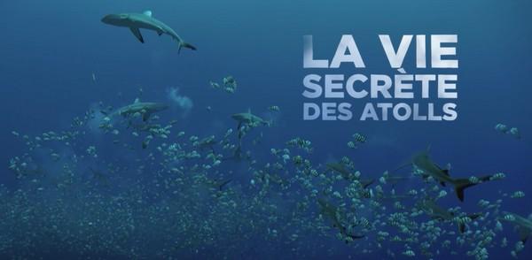 La vie secrète des Atolls - Musique de Laurent Parisi